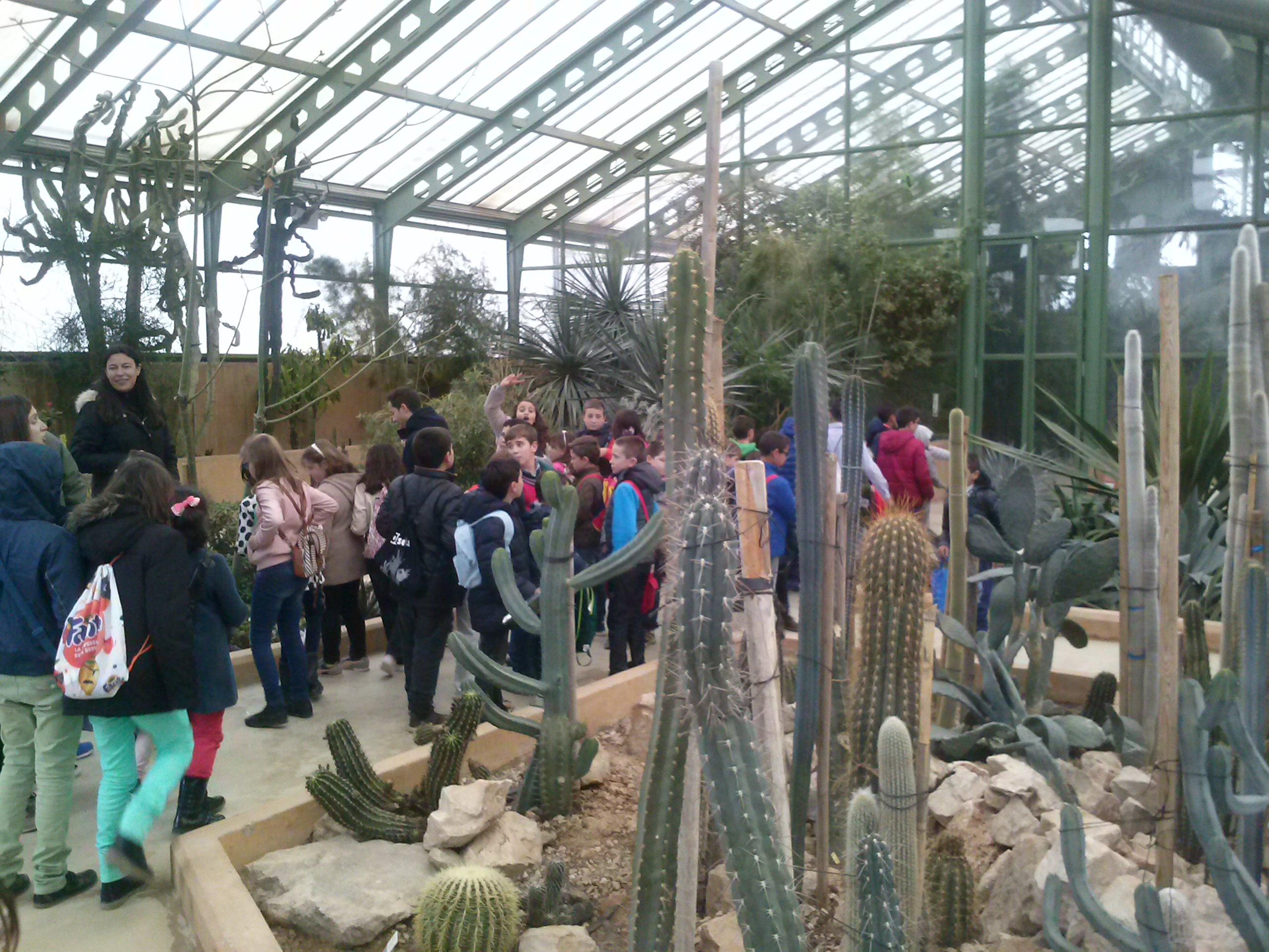 Visita al jard n bot nico de clm albacete ceip pablo for Ceip jardin botanico